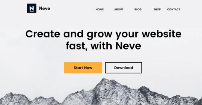 Neve wordpress theme